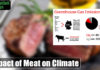 Impact of Meat on Climate